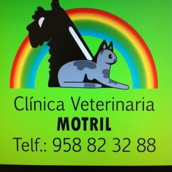 clinica-veterinaria-motril