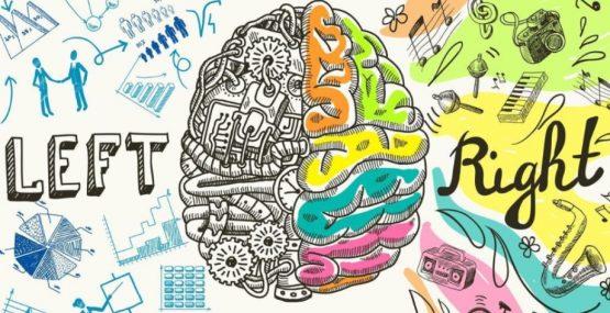 Teoría de las Inteligencias múltiples: un arcoíris único